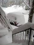 Snow-deep!