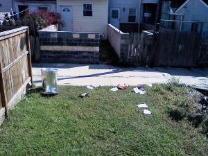 Trash day October 6 2010
