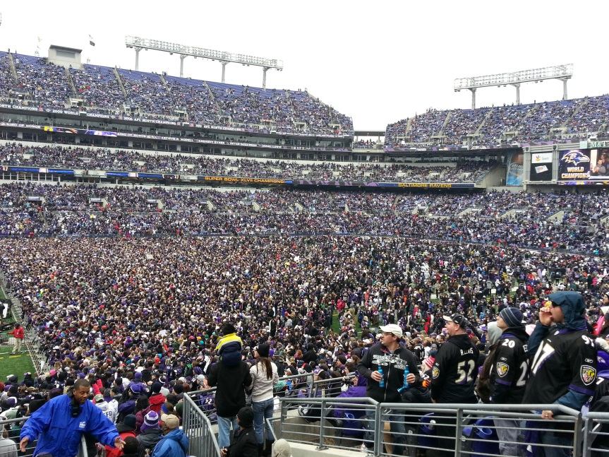 Ravens Superbowl Parade!
