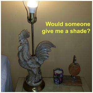 g no shade